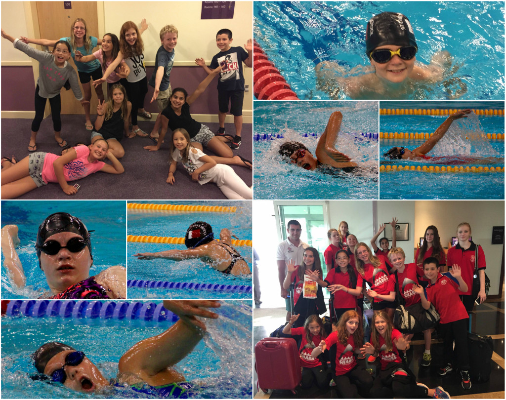al soltis swim meet 2015