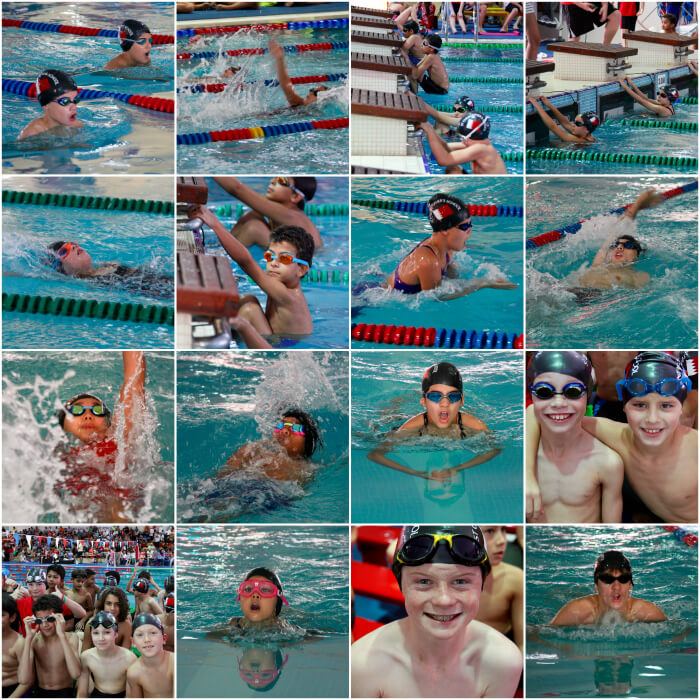 Swimchamps2015