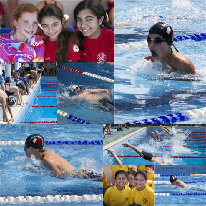 swim-gala3